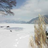 Winter am Wolfgangsee_4